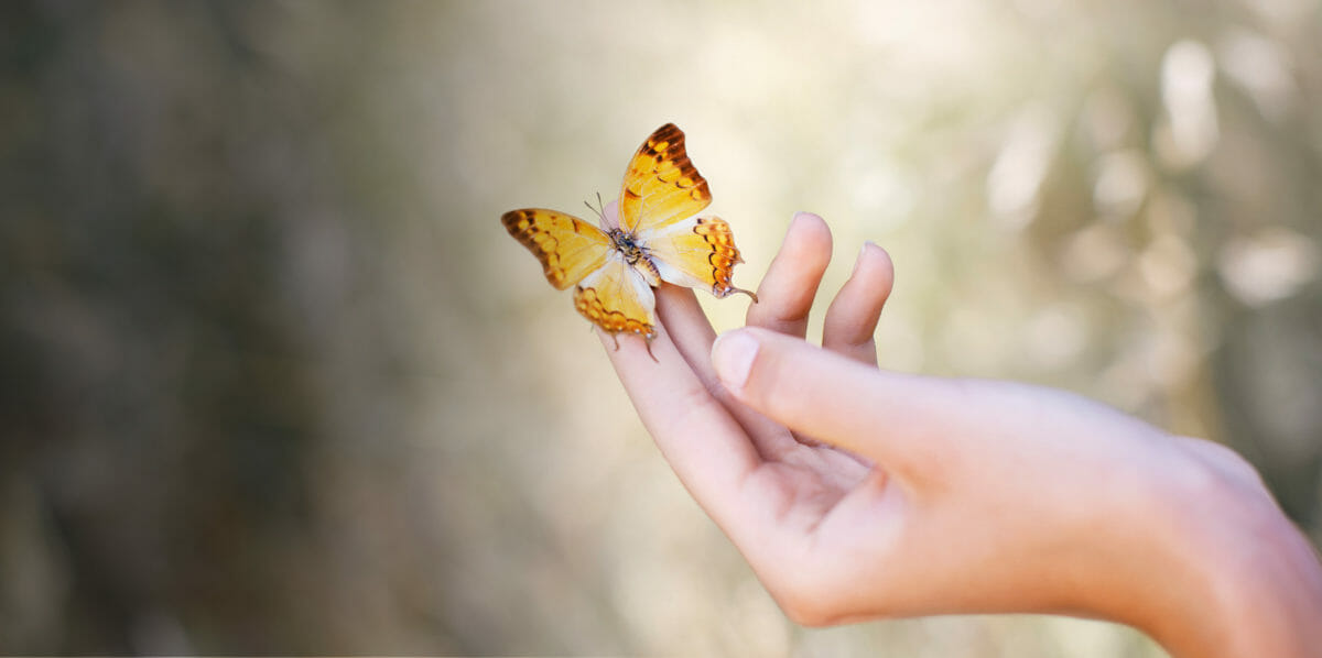 Butterfly in hand with peace of mind at MorseLife Hospice End of Life comfort care, dignity, celebrating life. Mobile life