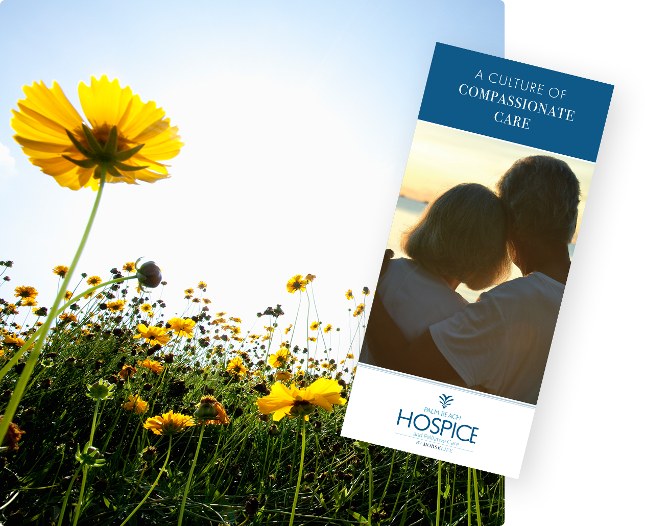 Hospice brochure with yellow flowers, compassionate, end of life care, hope, peace of mind, terminal illness